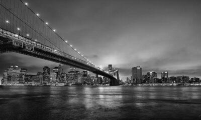 Pepe_Soho_Brooklyn_Bridge_V