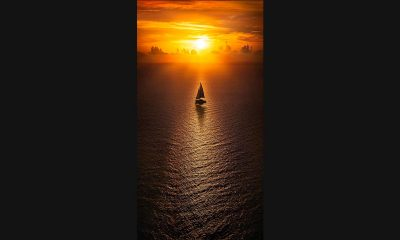 Pepe_Soho_Voyage