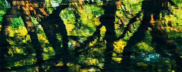 Pepe_Soho_Mirror_Lake_II