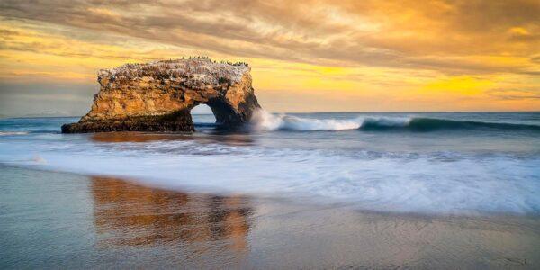 Pepe_Soho_Natural_Bridges