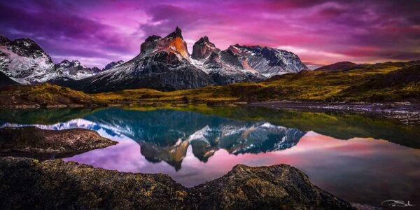 Pepe_Soho_Purple_Sunrise