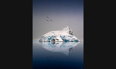 Pepe_Soho_Reflection_in_Antartica