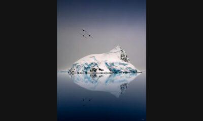 Pepe_Soho_Reflection_in_Antartica