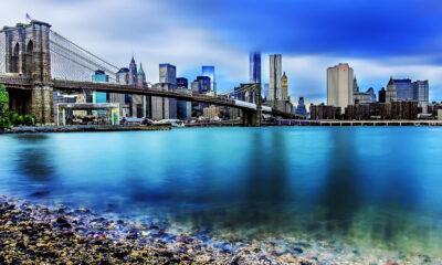Pepe Soho - Brooklyn Bridge III