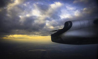 Pepe Soho - Flight